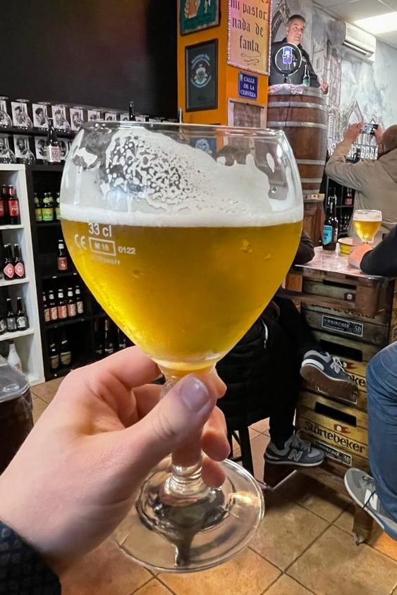 cata cervezas Domus